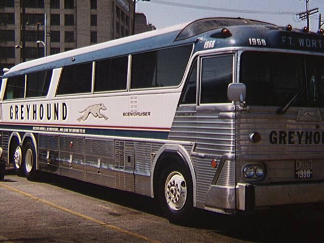 1960s greyhound