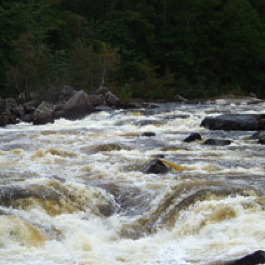 Picture courtesy of Northeast Whitewater, http://www.northeastwhitewater.com/.